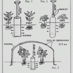 Цена-ефективна система за капково напояване